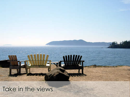 The view from Doe Bay Resort (photo from Doe Bay website)